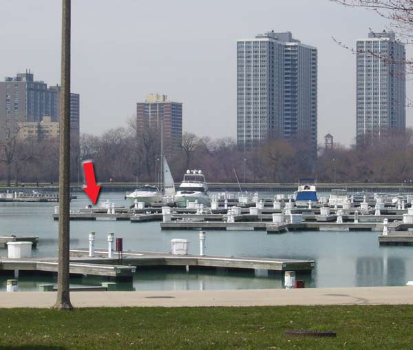 The docks at Montrose Harbor, The red arrow shows where we finally found the Laughing Gull.